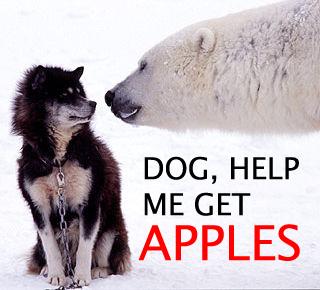 dog-get-me-apples.jpg