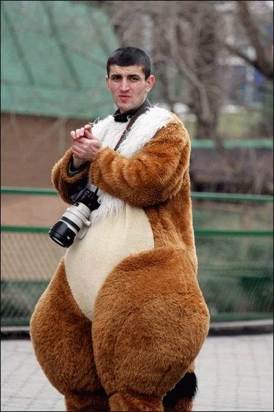 photo-squirrel.jpg