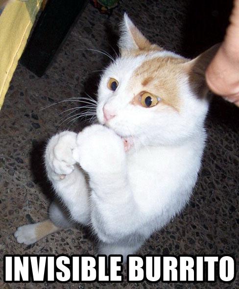 invisible-burrito.jpg