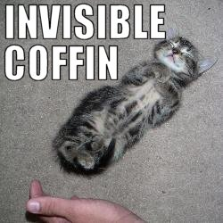 invisible-coffin.jpg