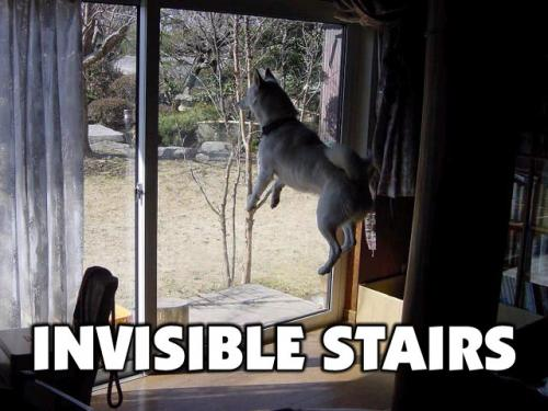 invisible-stairs.jpg
