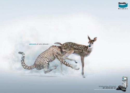 new-brakes-head-up-deer-ass.jpg