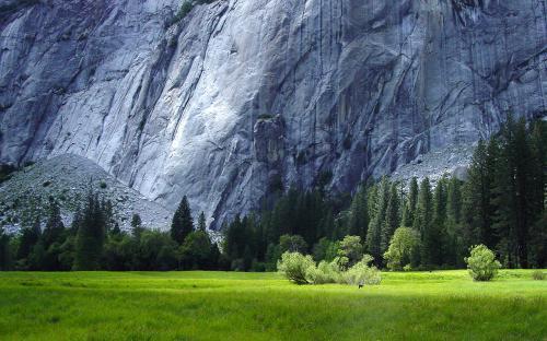 great-mountain-field-wallpaper.jpg