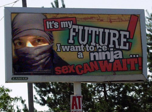 my-ninja-future.jpg