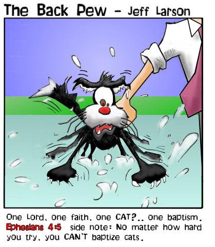 cat_baptism.jpg
