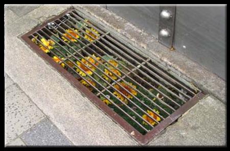 subway-flowers.jpg