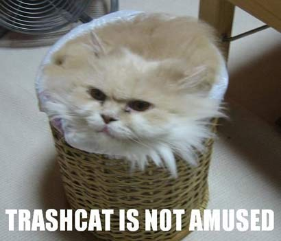 Not Amused!