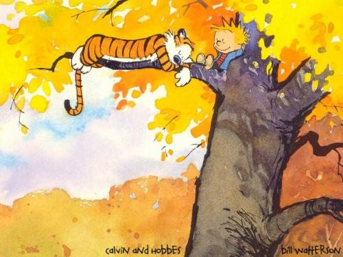 Calvin And Hobbes Rock
