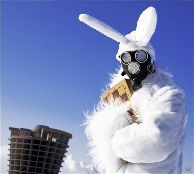 gas-mask-bunny.jpg