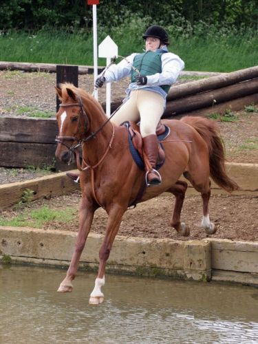 Fucked up horse jump