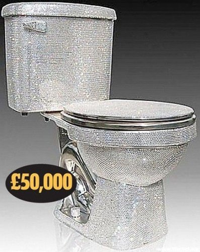 Diamond Studded Toilet
