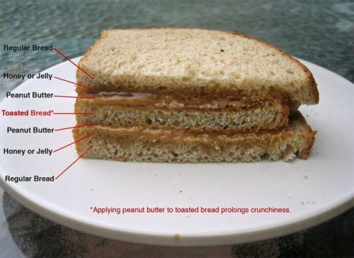 ultimate peanut butter and jelly sandwich