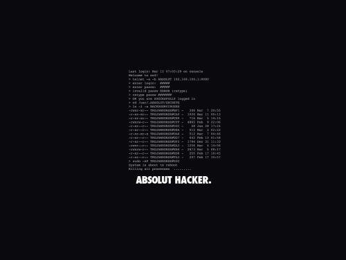 absolut hacker