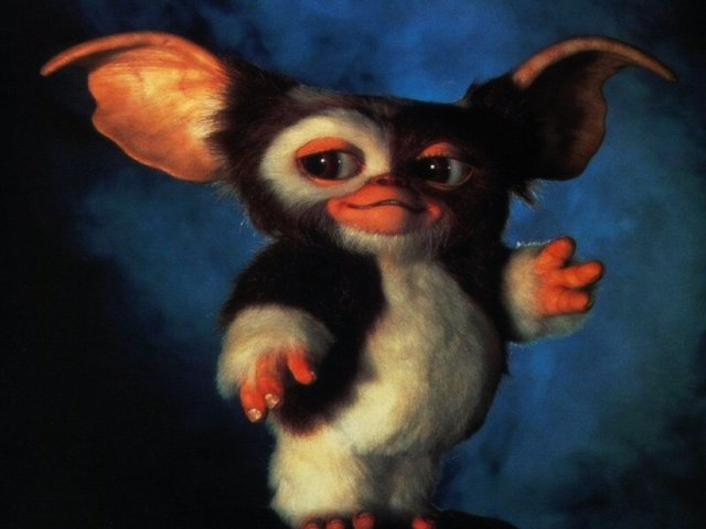 gizmo is waving at you