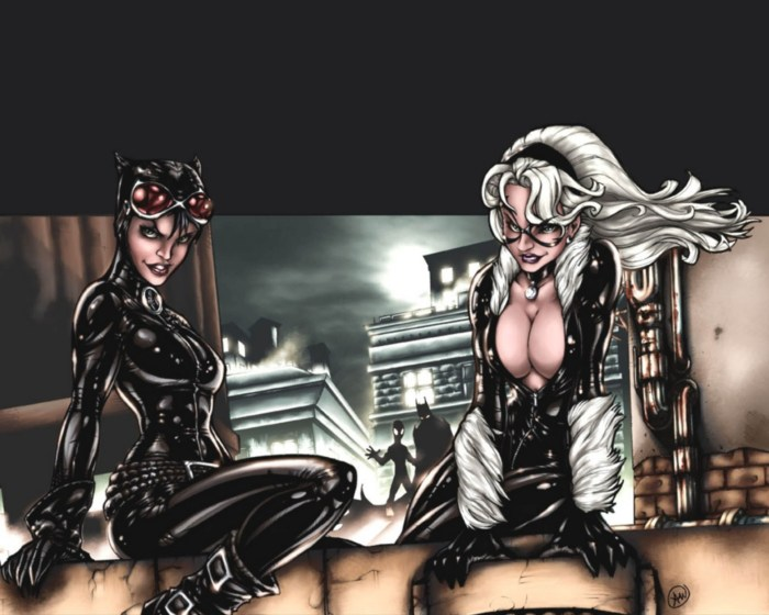 catwoman and black cat compare