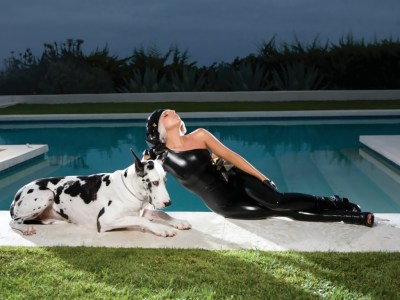 lady gaga big dog by pool myconfinedspace