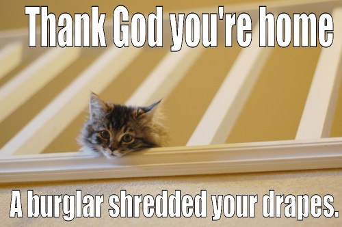 a burglar shredded your drapes