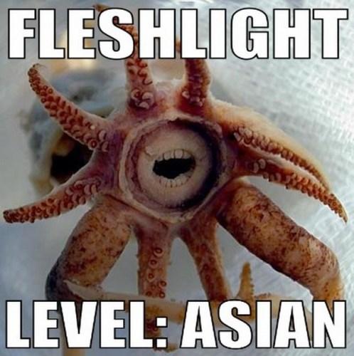 Asian Fleshlight