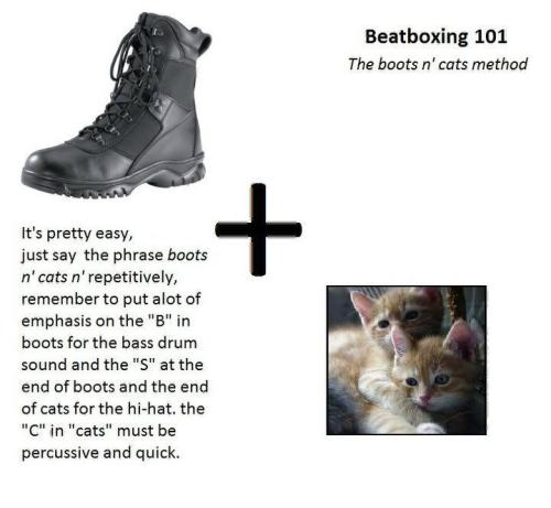 beatboxing 101 - boots n cats