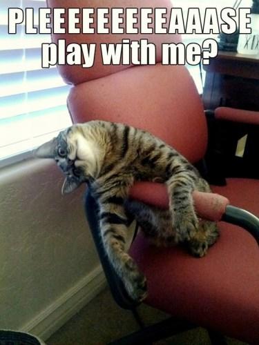 pleeeeeeeeeaaase play with me