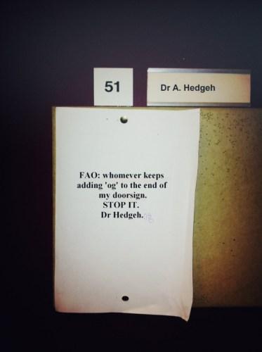 Dr Hedgehog