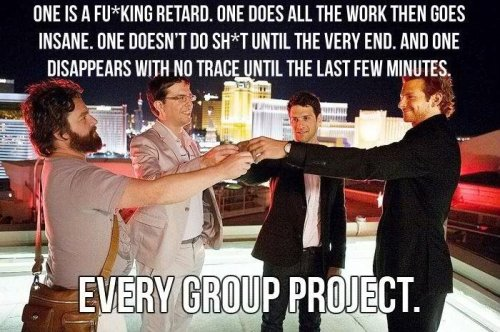 every team project
