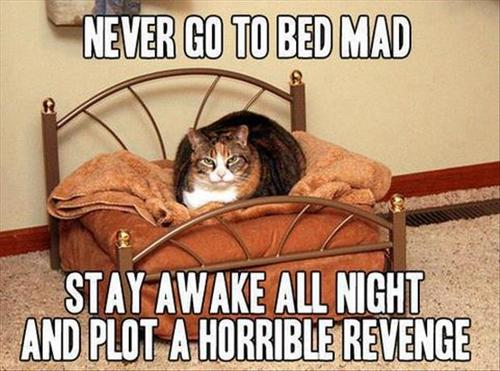 never go to bed mad.jpg