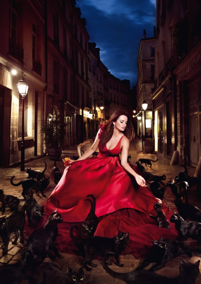 red dress and cats.jpg
