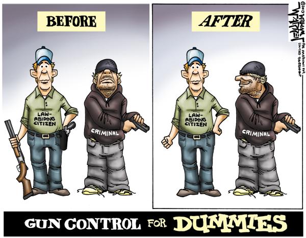 gun control for dummies.jpg