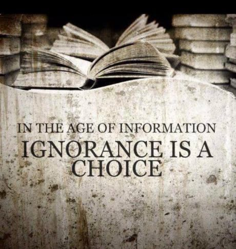in_the_age_of_information_ignorance_is_a_choice