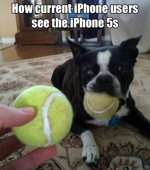 how current iphone users see the new iphone
