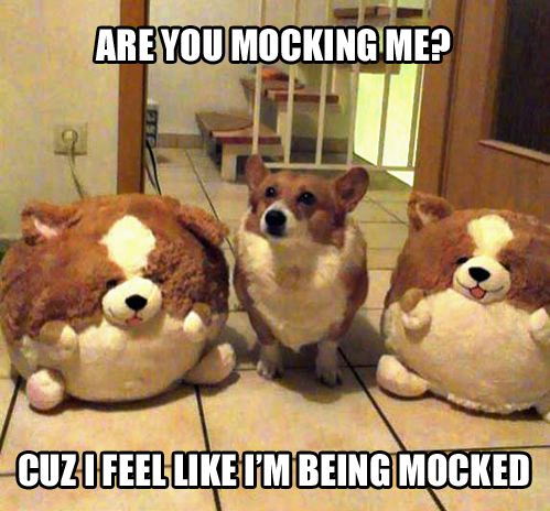 are you mocking me.jpg