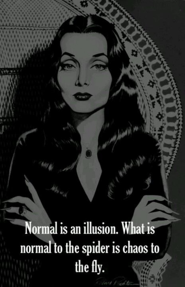 Normal is an illusion.jpg