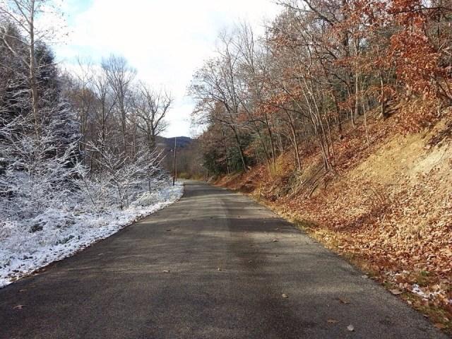 fall vs winter.jpg