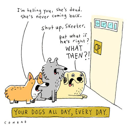 Your dogs day, all day, every day.jpg