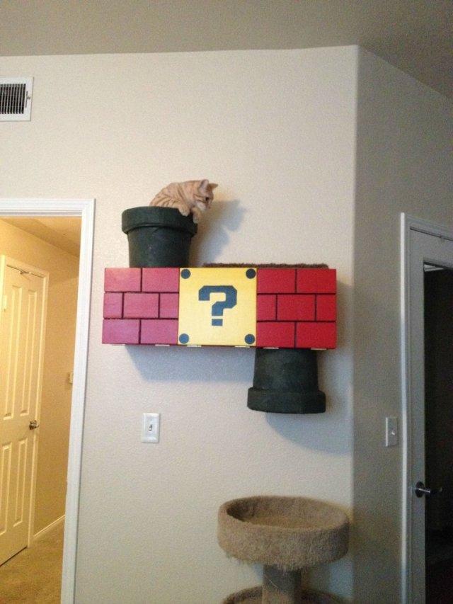 Cat Portals.jpg