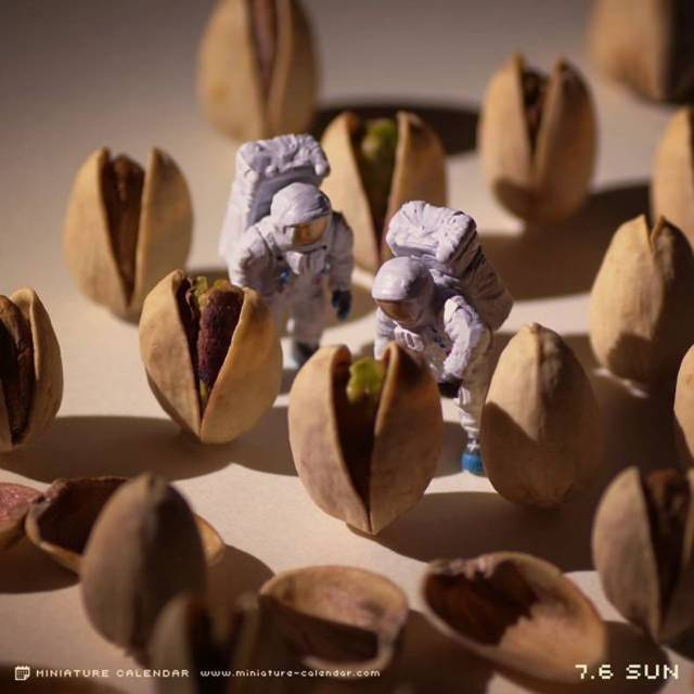 Miniature Alien Pods.jpg