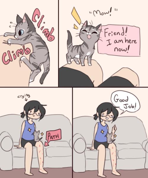 Kitten Climber.png