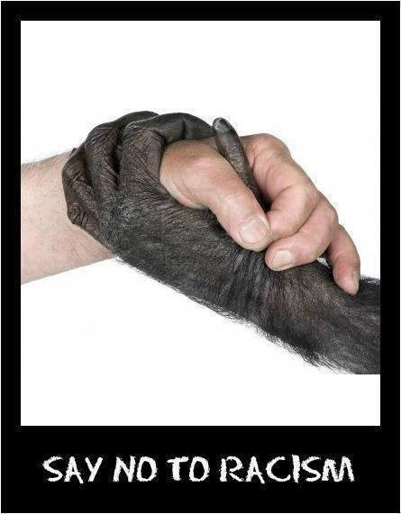 Say no to racism.jpg