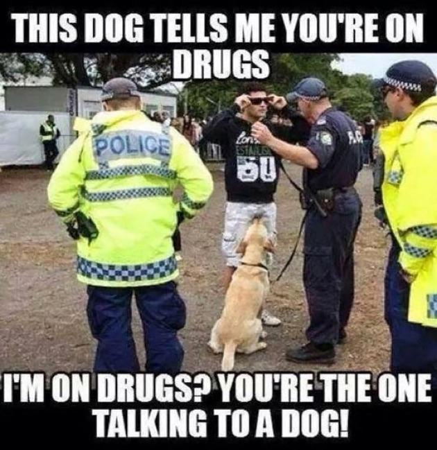 this dog tells me.jpg