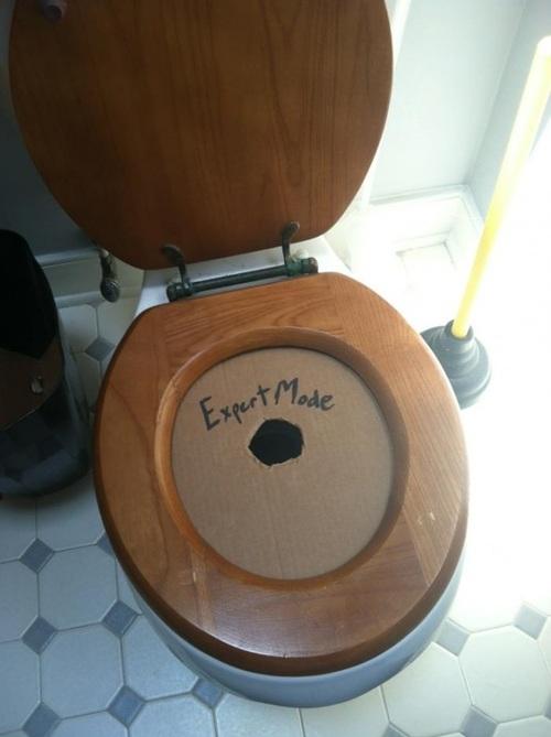 Expert Mode Toilet.jpg