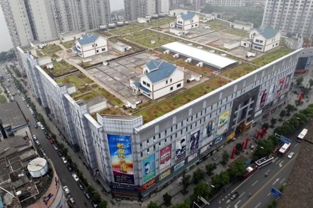 Roof Top City.jpg