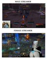 male vs female streamers.jpeg