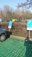 parking for women.jpg