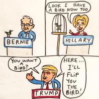 political birds.png