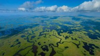 Aerial view of Everglades National park in Florida.jpg
