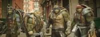 The Teenage Mutant Ninja Turtles.jpg