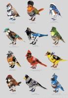 battle birds.jpeg
