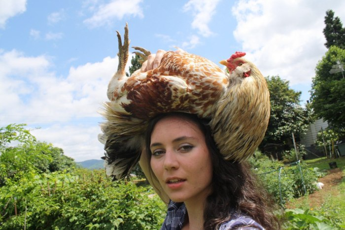 Chicken Hat.jpg