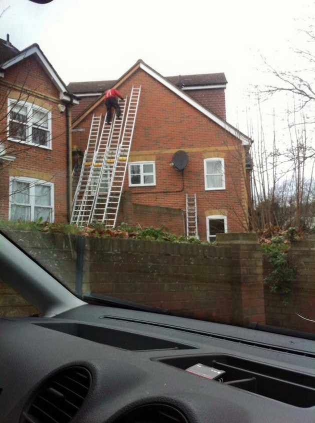 Needs More Ladders.jpg